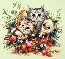 Borduurpakket Lovely kittens - Chudo Igla (Magic Needle)