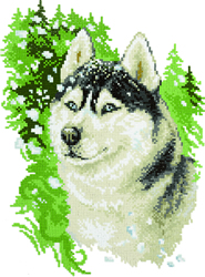 Diamond Painting Husky - Freyja Crystal