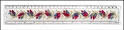 Plexiglas Liniaal 30 cm - Framecraft