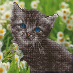 Diamond Art Kitten - Leisure Arts