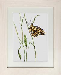 Borduurpakket Butterfly - Luca-S