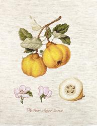 Borduurpakket The Pear shaped Quince - Luca-S