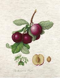 Borduurpakket The Nectarine Plum - Luca-S