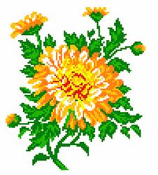 Voorbedrukt Aida Calendula Flower - Matryonin Posad