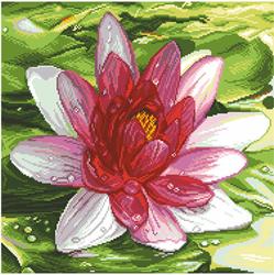 Voorbedrukt Aida Water Lily - Matryonin Posad