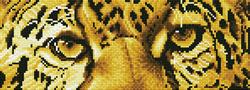 Diamond Dotz Leopard Spy - Needleart World