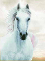 Diamond Dotz Imperial Stallion - Needleart World