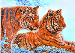 Diamond Dotz Tigers in the Snow - Needleart World