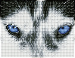 Diamond Dotz Mystic Husky - Needleart World