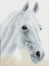 Diamond Dotz Arabian Beauty - Needleart World