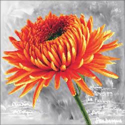 Voorbedrukt borduurpakket Orange Dahlia - Needleart World