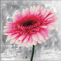 Voorbedrukt borduurpakket Pink Dahlia - Needleart World