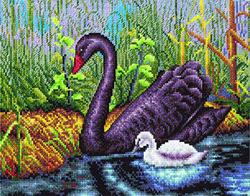 Borduurpakket Black Swan - PANNA