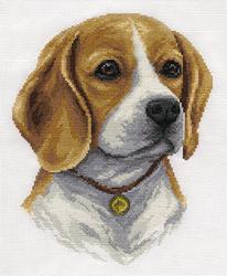 Borduurpakket Beagle - PANNA