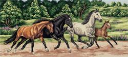 Borduurpakket Wild Horses - PANNA