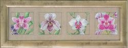 Borduurpakket 4 Orchids - Permin