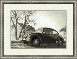 Borduurpakket The Beetle - RIOLIS