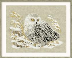Borduurpakket White Owl - RIOLIS