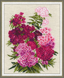 Borduurpakket Sweet William - RIOLIS