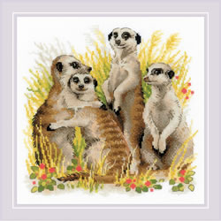 Borduurpakket Meerkats - RIOLIS