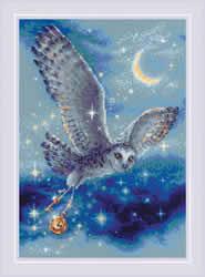 Borduurpakket Magic Owl - RIOLIS