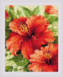 Borduurpakket Hibiscus - RIOLIS