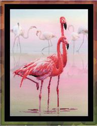 Borduurpakket Flamingo - RIOLIS