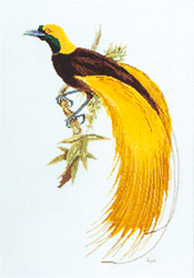 Borduurpatroon Greater Bird of Paradise - Ross Originals