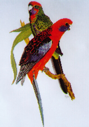 Borduurpatroon Crimson Rosellas - Ross Originals
