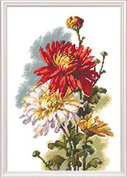 Borduurpakket Chrysanthemum - RTO