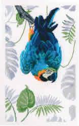 Borduurpakket Macaw  - RTO