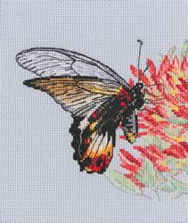 Borduurpakket Nectar for Butterfly - RTO