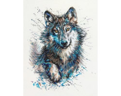 Borduurpakket Snow Splashes - Wolf - RTO
